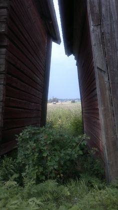 I love this view, no hills. Windows, Ramen, Window