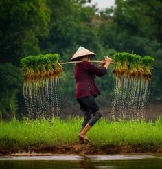 Photography Travel People Culture New Ideas Nature Photography, Travel Photography, Village Photography, Beautiful Vietnam, Bali, Art Asiatique, Indochine, People Of The World, Vietnam Travel