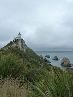 New Zealand, Nugget Point, Catlins. The Catlins is a major highlight of the Southern Scenic Route. Situated off the beaten track, the Catlins encompasses the area between Kaka Point and Fortrose.
