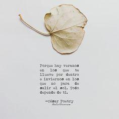 Linda noche! :) @cesarpoetry @irenetulipanes  #poetic8universe #irenetulipanes #irenetgomez #irenetulipanes #amor #sentimientos #letrasdeautores #sentimientos #artefloral #flores #flowers #vintage #lila #photography #artefloral #quotes #frases #amor #pinterest #tumblr #hojaseca