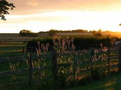 Bainvalley Cottages, Hemingby, Horncastle, Lincolnshire, England. Self Catering. Holiday. Travel. #AroundAboutBritain. Day Out. Explore UK. Family Holiday. Break. Relax. Adventure.