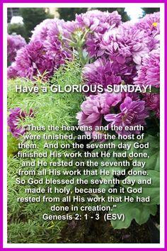 Blessed Sunday Morning, Good Morning Sunday Images, Sunday Prayer, Sunday Wishes, Sunday Greetings, Sunday Pictures, Happy Sunday Quotes, Sunday Love, Morning Love Quotes