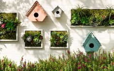 What a great idea to mix bird houses with succulents in frame to create a beautiful vertical garden. Click through to find more DIY vertical garden ideas. Decorative Garden Fencing, Vertical Garden Diy, Herb Garden Design, Diy Garden Decor, Vines, Mushroom Decor, Plantar, Garden Spaces, Small Gardens