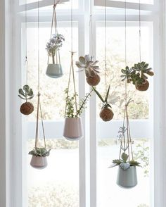 Hanging plants from hubsch interiors
