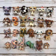 Lot of Hasbro Littlest Pet Shop Toys Various Animals Little Pet Shop Toys, Little Pets, Modern Toys, Teddy Bear, Fun, Animals, Shopping, Ebay, Fin Fun