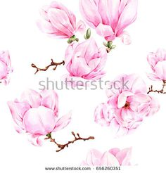 Find Watercolor Illustration Hand Painted Magnolia Pattern stock images in HD and millions of other royalty-free stock photos, illustrations and vectors in the Shutterstock collection.