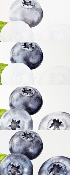 Eunike Nugroho: [Tips] Blueberries: Painting Bloom and Correcting Mistakes in Watercolour. Excellent tips on this blog.
