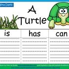 Do you ever feel like a turtle hiding in its shell for the first few weeks of summer?that's EXACTLY how I feel during the month of June. May Themes, First Grade Writing, Teaching Science, Graphic Organizers, How I Feel, Turtle, The Unit, Organization, Kids