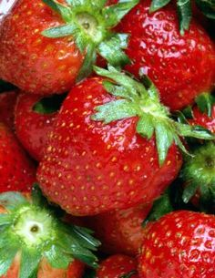 How to Divide  Propagate Strawberries