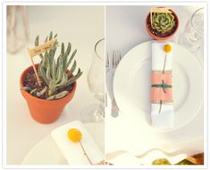 """succulent favors with """"for you"""" flag and billy ball accents"""