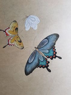 Butterfly Painting, Butterfly Art, Chocolate Showpiece, Korean Painting, Old Paintings, Beautiful Butterflies, Chinese Art, Animal Drawings, Pretty Pictures
