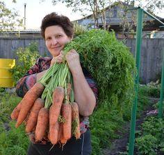 В копилку огороднику! Народные приметы для садоводов-огородников!