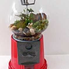 terrarium gumball machine by squiggly rainbow Food Crafts, Diy Arts And Crafts, Diy Crafts, Garden Terrarium, Terrariums, Terrarium Ideas, Bubble Gum Machine, Little Land, Continental