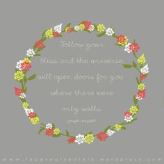 Follow your bliss and the universe will open doors for you where there were only walls. - Joseph Campbell