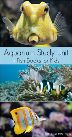 FREE Aquarium Study Unit Resources + Children's Books about Fish Recommendations