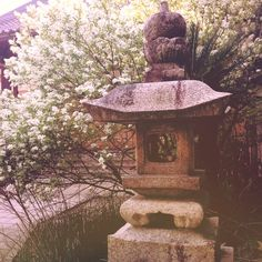 Home Sweet Home: Japanese Garden, Temple