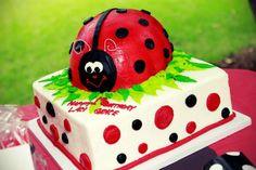 Ladybug Birthday Cakes For Kids