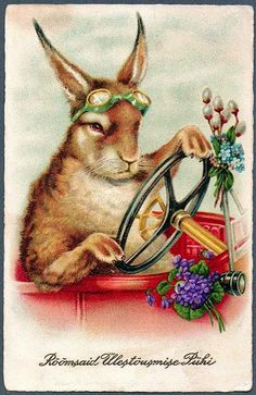 vintage rabbit cards - Google Search