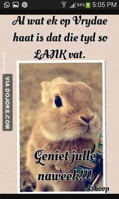 Afrikaanse Quotes, Goeie More, Happy Friday, Qoutes, Humor, Words, Funny, Animals, South Africa