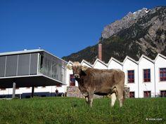 University of Liechtenstein - my alma mater.