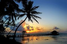 Sunrise just south of us at Grand Caribe Resort Ambergris Caye #Belize.  Gorgeous photo by Danielle Burruss.