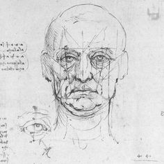 Leonardo face proportions sketch for mural