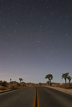 Top 5 Reasons to visit Joshua Tree National Park! Click for more.