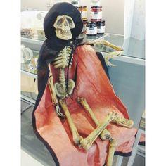 Trick or treat? #halloween #vscocam #vsco #igersbcn #skeleton #trickortreat