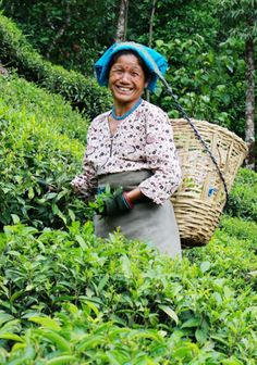 Darjeeling, India, www.marmaladetoast.co.za #travel find us on facebook www.Facebook.com/marmaladetoastsa #inspired