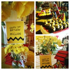 My own snoopy Charlie Brown peanuts themed kids party for my nephews 3rd birthday party!