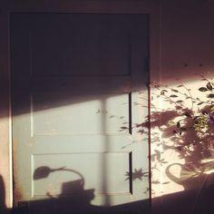 morning light: