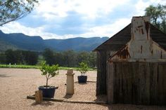 Tyrrell's Winery, Hunter Valley NSW