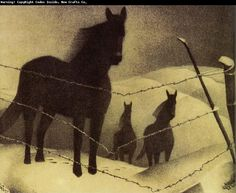 Grant Wood Paintings | ... grant wood s paintings painting february painting id 36199 order now