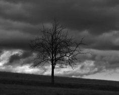 """Тест """"Ваш уровень депрессии"""". Основные признаки депрессии - печаль, подавленность, усталость, негативное отношение к жизни. Депрессия может возникать как реакция на травмирующие события или действие постоянного стресса, но может развиваться и без видимой причины. Пройдите тест и узнайте свой уровень депрессии."""