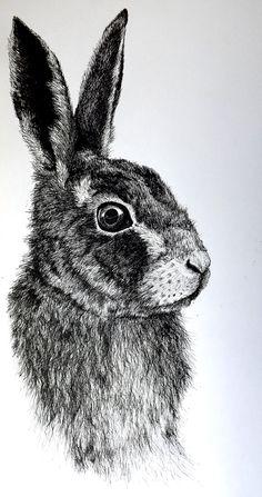 'Hazel' A portrait of the a rabbit from the Novel Watership Down original art print Animal Sketches, Animal Drawings, Art Sketches, Watership Down, Bugs Bunny Drawing, Scratchboard Art, Bunny Painting, Ink Pen Drawings, Rabbit Art
