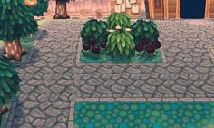 Some cute plant and path arrangement from Rainford (6400-5643-7766)