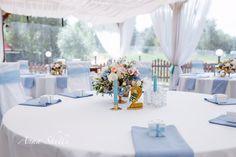 Нежное Оформление свадьбы  Голубое Оформление свадьбы  Декор свадьбы  Свадебный декор  Оформление гостевых столов  Европейская рассадка  Голубая свадьба  Оформление свадьбы от Anna Shelli