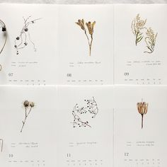 2020年カレンダー【BOTANICAL】 | ハンドメイドマーケット minne Kids Calendar, Creative Calendar, 2021 Calendar, Weekly Calendar, Calendar Ideas, Weekly Planner, Bullet Journal Writing, Bullet Journal Aesthetic, Printable Calendar Template