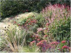 Garden Design by Sarah Price. Her designs are breathtaking.