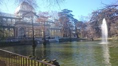 Check out some of Madrid's best green spaces, like the famous Retiro Park or the Botanical Gardens.