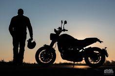 Sunrise portrait at my favourite spot. Motorcycle Photography, Bike Life, Motorbikes, Sunrise, Hoodie, Animal, Lifestyle, Portrait, Vintage