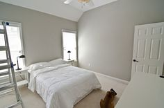 Valspar Woodlawn Colonial Gray for the bedroom