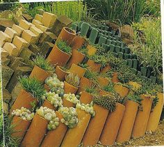 Category: Inspiration And Design Ideas - Clark Kent Creations ... Garden Retaining Wall, Drain Pipes, Water Pipes, Clay Pipes, Patio Planters, Google, Yard Landscaping, Patio Design, Succulents