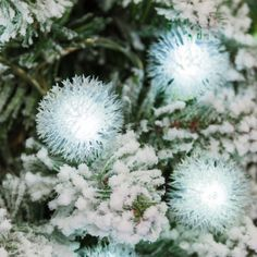 Collana 8 m, 40 Snow Ball, led bianchi, cavo verde, con giochi di luce, luci di Natale, luci natalizie, luci per l'albero di Natale: LuminalPark: Amazon.it: Casa e cucina