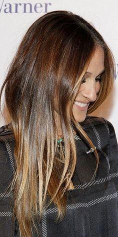 ecaille hair color on long hair 2016