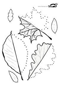 Line worksheets. Autumn Crafts, Autumn Art, Kids Learning Activities, Autumn Activities, Fall Preschool, Preschool Crafts, Toddler Crafts, Crafts For Kids, Eid Crafts