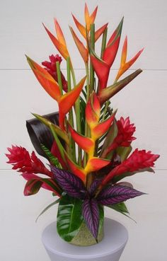tropical plant arangment Tropical Plants and Fresh Cut Tropical Flowers for Sale Heliconia Tropical Flowers, Tropical Flower Arrangements, Church Flower Arrangements, Beautiful Flower Arrangements, Exotic Flowers, Silk Flowers, Beautiful Flowers, Tropical Plants, Exotic Plants