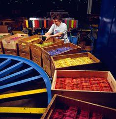 Crayola Factory Florida Tours