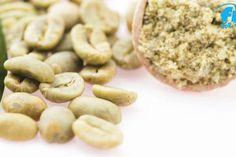 Grüner Kaffee: Fatburner Grüner Kaffee