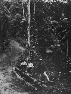 File:StateLibQld 1 105524 Hydraulic Department employees inspecting the cast iron pipe of Cairns water supply, 1910.jpg